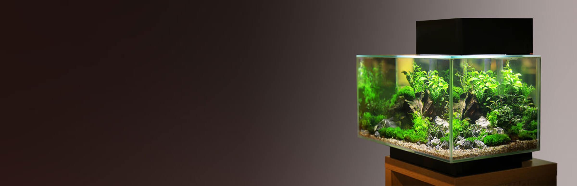 Нано аквариум