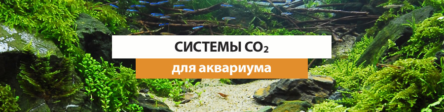 Системы Со2 для аквариума