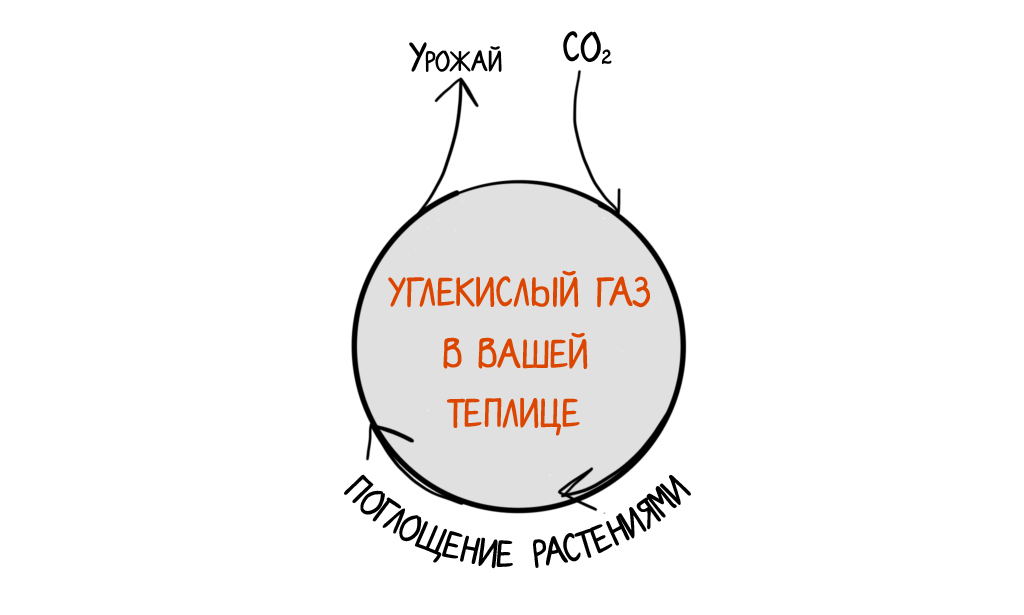Углекислый газ в теплице